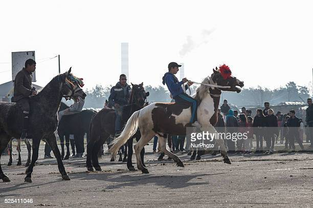 Bulgarian Roma celebrate Horse Easter in the Fakulteta neighborhood of Sofia on February 28, 2015. Every year on St. Todor's day, horse enthusiasts...