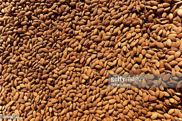 bulk almonds - almond stock pictures, royalty-free photos & images