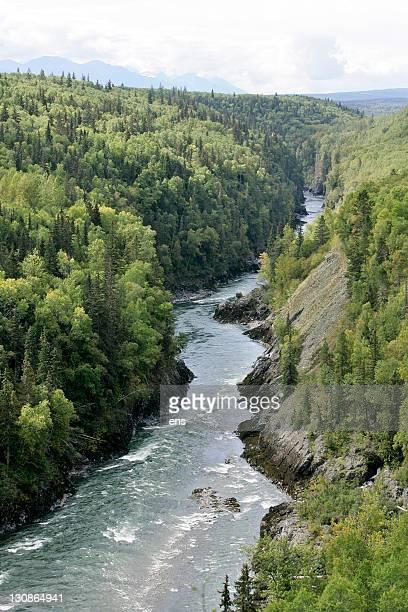 bulkley river in british columbia, canada - norden stock-fotos und bilder