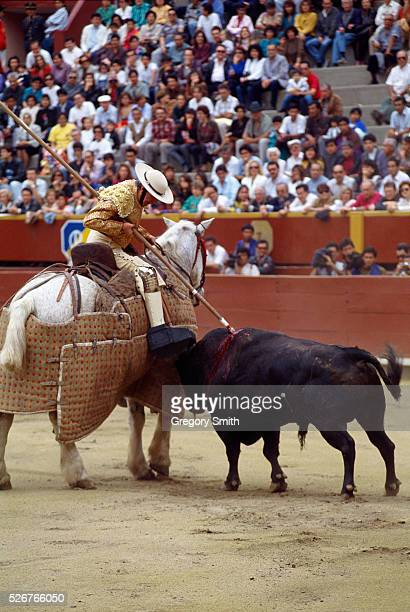 A bull charges at a picador in a corrida in Lima Bullfighting is a popular sport in the Spanishspeaking world
