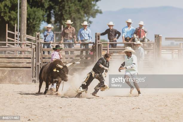 Bull Chasing Bull Rider during Rodeo Competition
