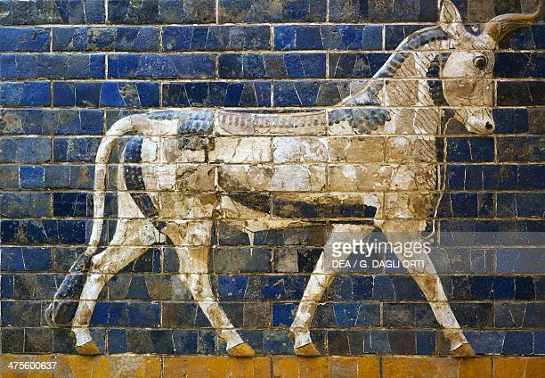 A bull detail from glazed brick tiles depicting mythological animals that adorned the Processional Way to the Ishtar Gate in Babylon during the reign...