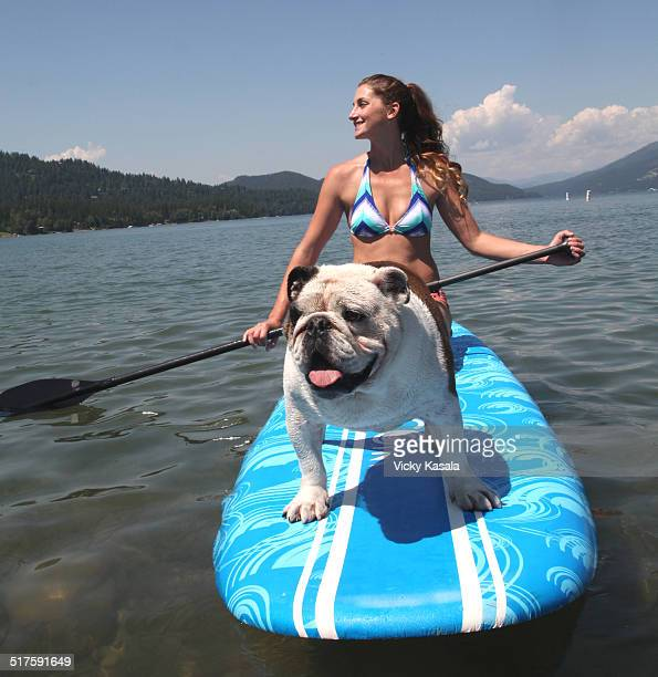 Bull dog riding on paddle board on lake.