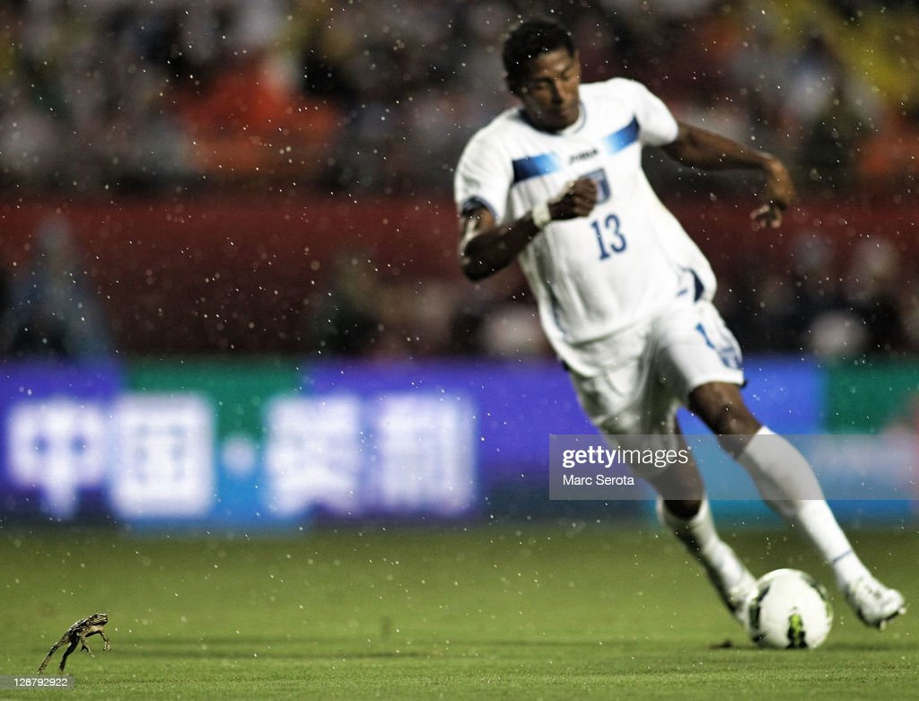 A Bull Frog hops around on the field as Carlos Costly #13 of Honduras brings the ball up in the rain against the USA at Sun Life Stadium on October 8, 2011 in Miami Gardens, Florida.