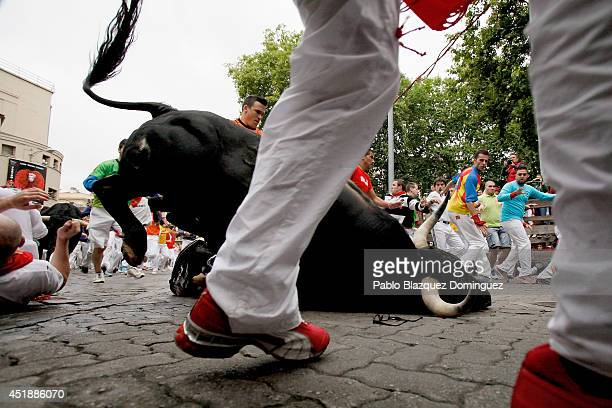 A bull from the Victorio Del Rio Cortes's fighting bulls falls amongs the runners near the end of the run on the fourth day of the San Fermin Running...