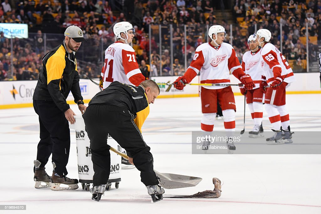 Bull gang picks up an octopus off the ice during the third period of the Boston Bruins against the Detroit Red Wings at the TD Garden on April 7, 2016 in Boston, Massachusetts.