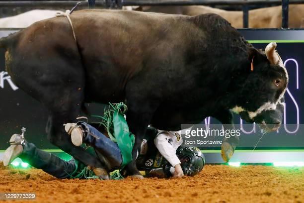 Bull I'm Busted runs over Daylon Swearingen during the PBR World Finals, on November 15th at the AT&T Stadium, Arlington, TX.