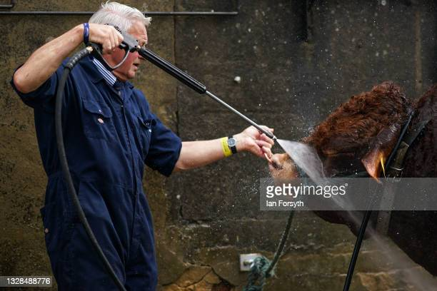 Bull is washed down by its owner on the first day of the 162nd Great Yorkshire Show at the Harrogate Show Ground on July 13, 2021 in Harrogate,...