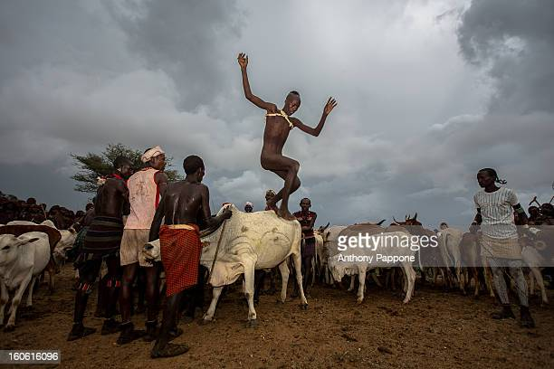 Bull jumping ceremony is a rite of passage ceremony for men coming of age must be done before a boy is permitted to marry. The boy must jump the cows...