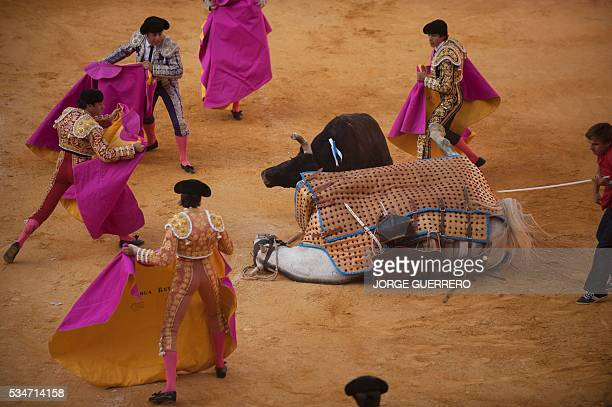 A bull knocks down a picador's horse during the Corpus bullfighting festival at a Granada bullring on May 27 2016 / AFP / JORGE GUERRERO