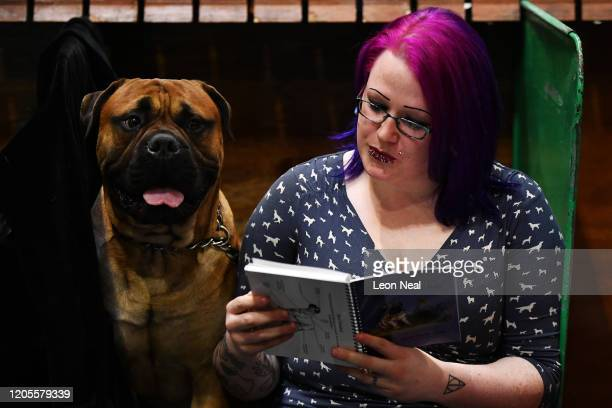 """Bull Mastiff named """"Keepersguard Ragnar's Wrath"""" looks at owner Helene Amor as she reads the show guide on day 3 of the Crufts dog show at the NEC..."""