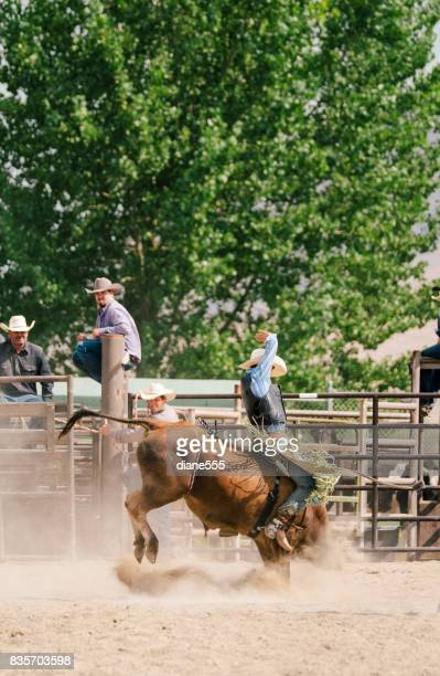bull rider at a small town rodeo - bull riding stock pictures, royalty-free photos & images