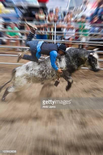 Bull Rider at rodeo