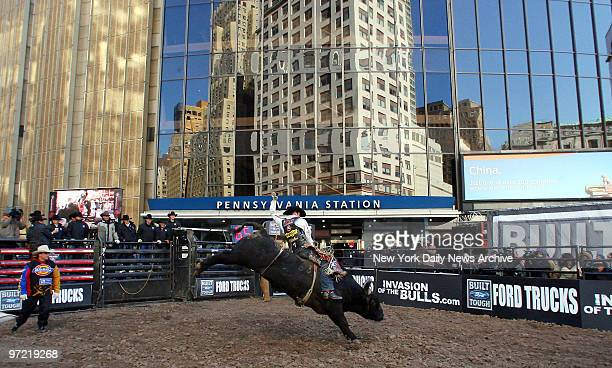 A bull rider attempts to stay mounted on a bucking bovine in a makeshift ring outside Madison Square Garden during the PBR Invasion of the Bulls event