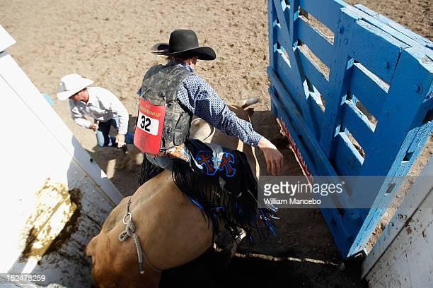 Bull rider Dakota Beck exits the chute riding G Force at the Pendleton Roundup on September 13 2012 in Pendleton Oregon
