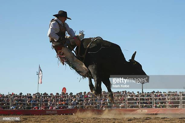 A bull rider is bucked off during the Bull Ride Spectacular on the second day of the 2014 Deni Ute Muster at the Play on the Plains Festival grounds...