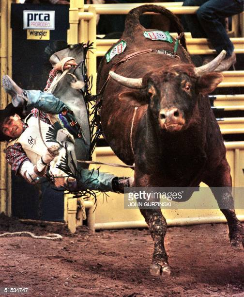 Bull rider Myron Duarte of Auburn WA gets thrown off the Bull Little Drifter to receive a score of zero points at the 1999 National Finals Rodeo in...