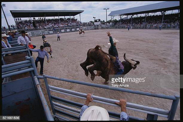Bull Riding at the Okeechobee Rodeo