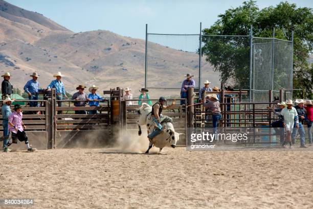 Bull Riding in a Rodeo