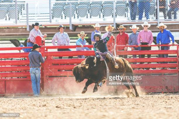 bull riding utah cowboys western outdoors and rodeo stampede roundup riding horses herding livestock istock photoshoot - istock photo stock pictures, royalty-free photos & images