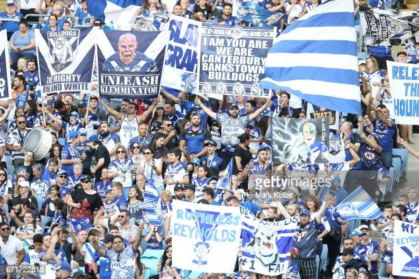 Bulldogs supporters cheer during the round eight NRL match between the Wests Tigers and the Canterbury Bulldogs at ANZ Stadium on April 23 2017 in...