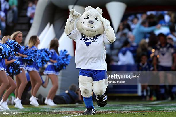 Bulldogs team mascot during the round 23 NRL match between the Canterbury Bulldogs and the Gold Coast Titans at Central Coast Stadium on August 16...