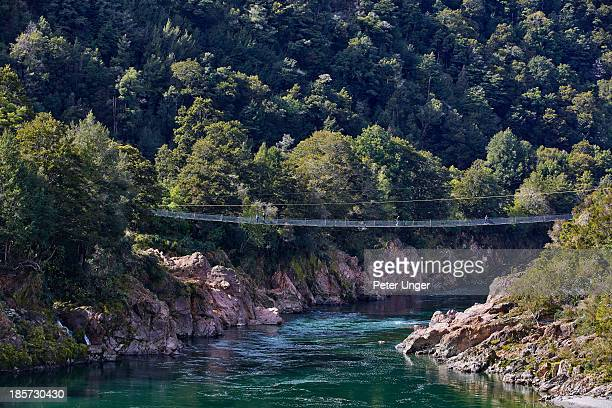 buller gorge swing bridge, nelson - peter nelson stock pictures, royalty-free photos & images