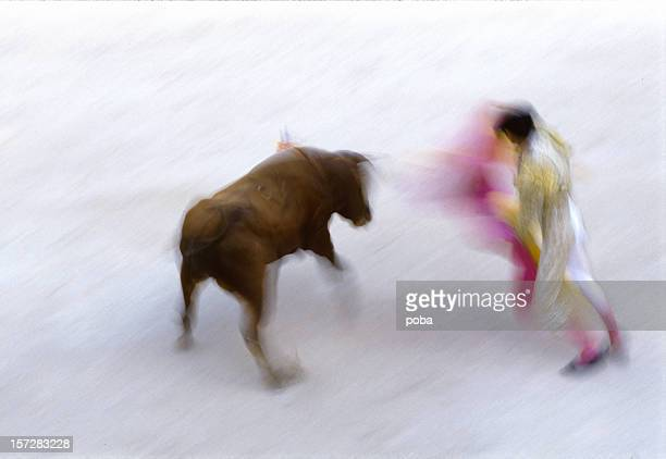 bullfight - bullfight stock pictures, royalty-free photos & images