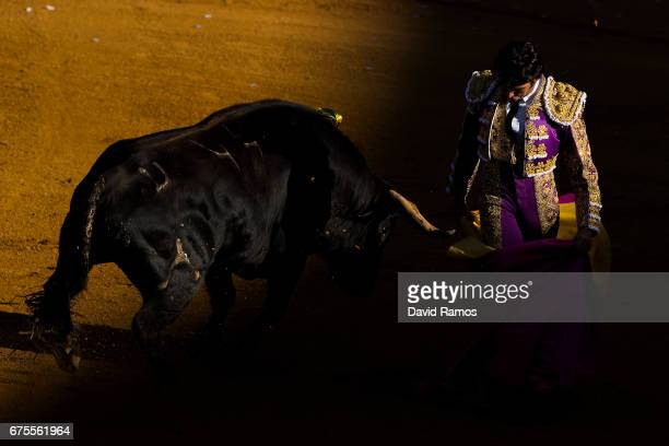 Bullfighter Cayetano Rivera Ordonez performs with a Daniel Ruiz ranch fighting bull at La Maestranza bullring on the second day of La feria de Abril...
