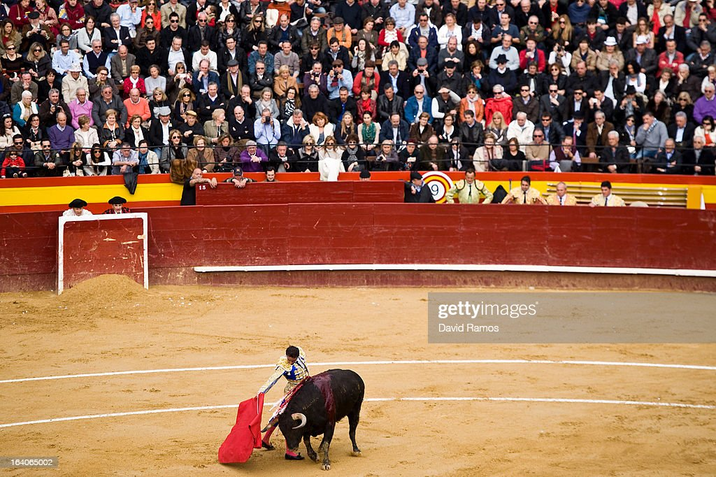 Bullfighter Enrique Ponce performs during a bullfight as part of the Las Fallas Festival on March 19, 2013 in Valencia, Spain. The Fallas festival, which runs from March 15 until March 19, celebrates the arrival of spring with fireworks, fiestas and bonfires made from large ninots (puppets).