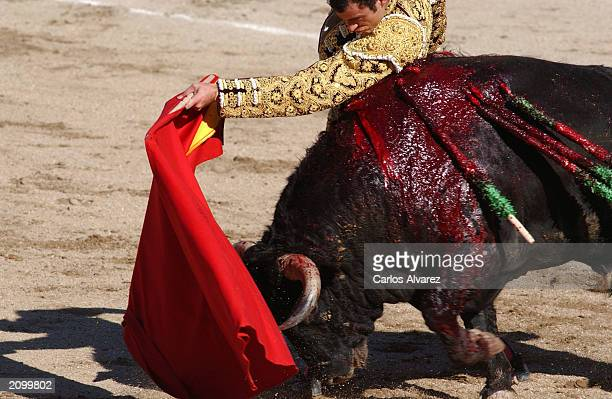 Bullfighter Finito de Cordoba battles a bull at the Corpus bullfights June 20 2003 in Toledo Spain