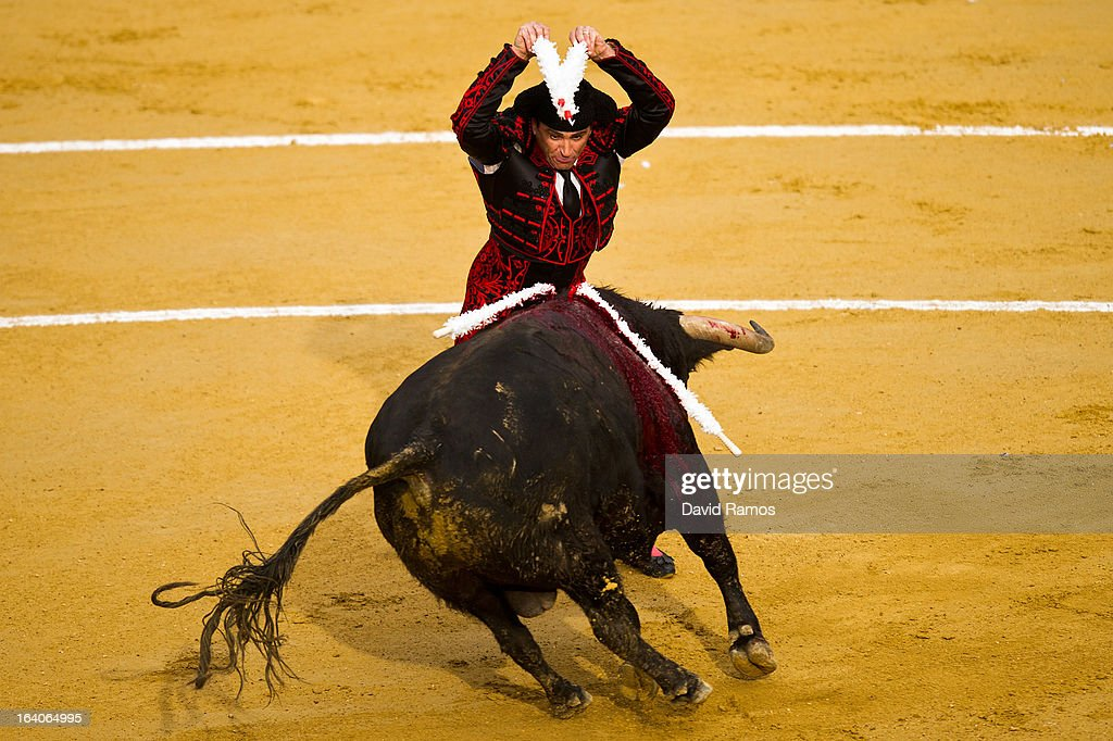 A bullfighter performs during a bullfight as part of the Las Fallas Festival on March 19, 2013 in Valencia, Spain. The Fallas festival, which runs from March 15 until March 19, celebrates the arrival of spring with fireworks, fiestas and bonfires made from large ninots (puppets).