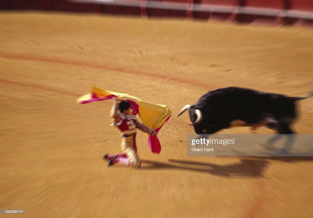 Bullfighting in ring : Stock Photo