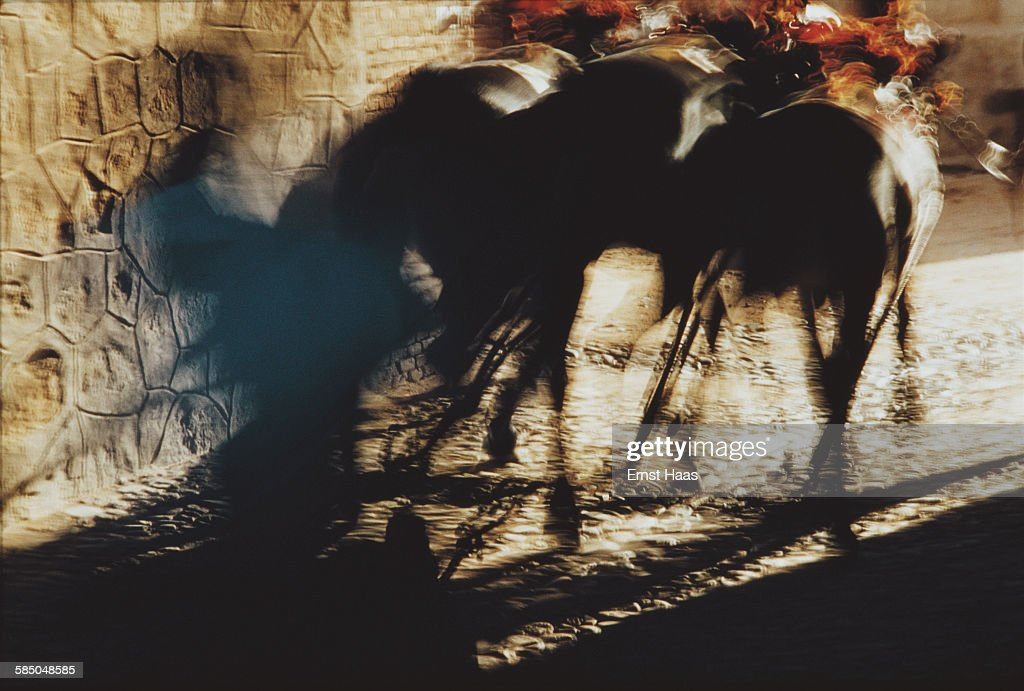 Arles Bullfight : News Photo