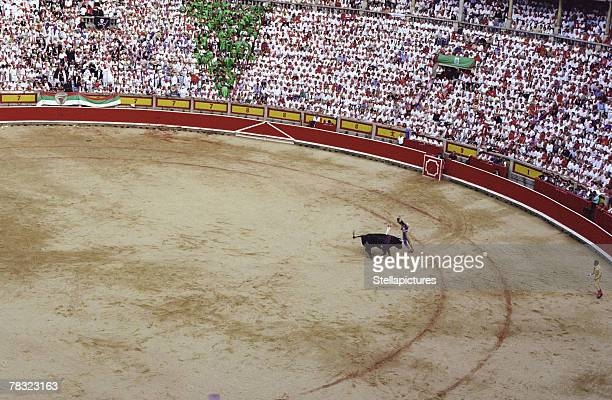 bullfighting ring in pamplona, spain - pamplona stock photos and pictures