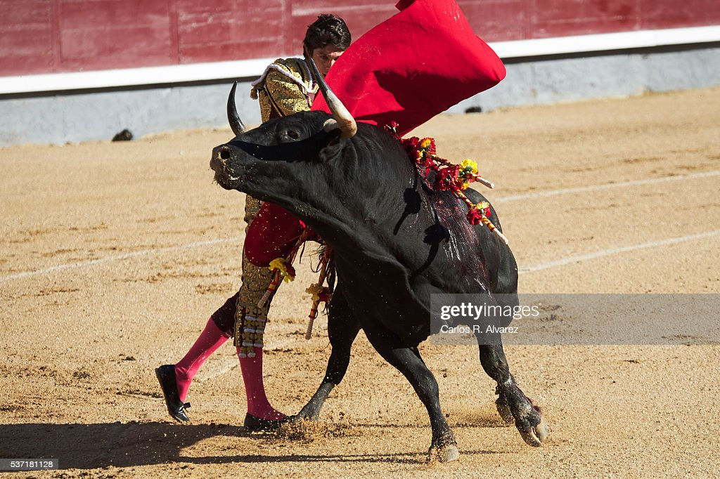 Bullfigther Sebastian Castella performs during the San Isidro bullfight fair at Las Ventas bullring on June 1, 2016 in Madrid, Spain.