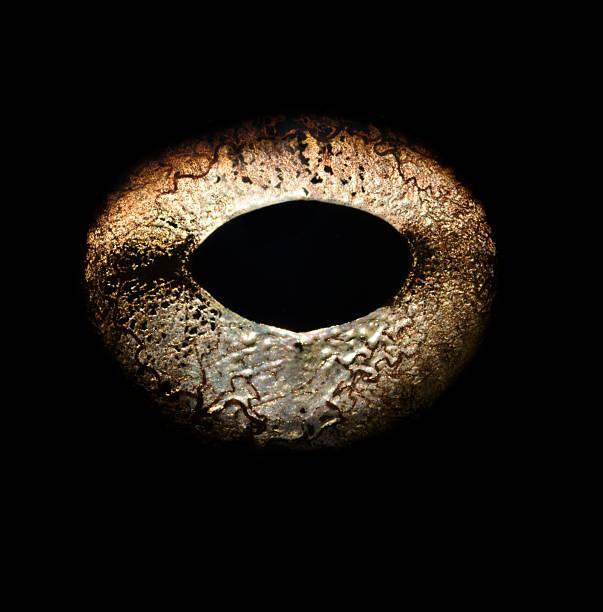 Bullfrog's eye, close-up