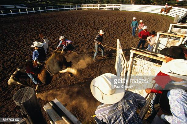 Bullriding event at rodeo, Lincoln Rodeo, Montana, USA