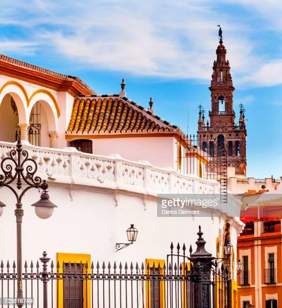 bullring stadium and giralda spire bell tower of seville cathedral, seville, andalusia, spain - la giralda fotografías e imágenes de stock