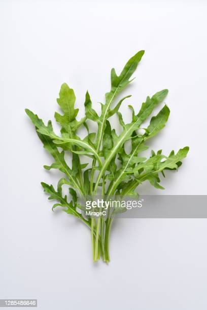 a bunch of arugula on white - arugula stock pictures, royalty-free photos & images