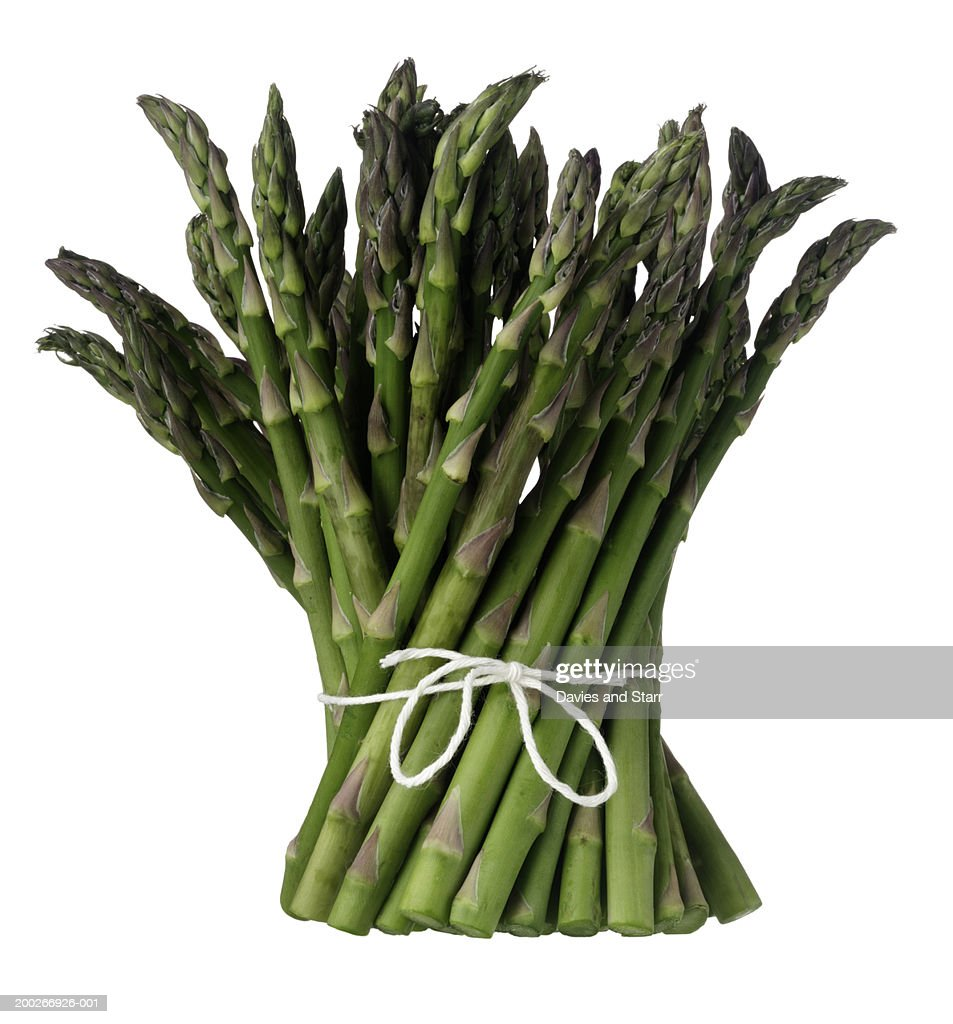 Bunch of asparagus : Photo