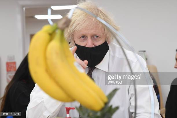 Bunch of bananas is seen in the foreground as British Prime minister Boris Johnson takes part in a still life class during a visit to the Monkey...