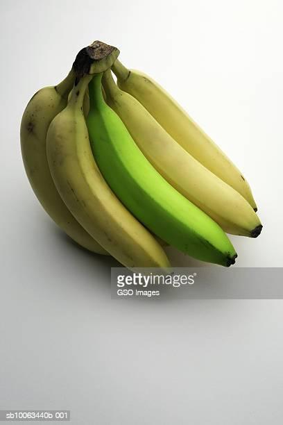 Bunch of bananas, one green, studio shot