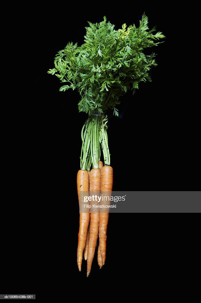 Bunch of carrots on black background : Foto stock