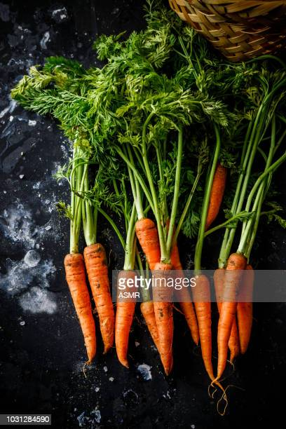 bunch of carrots - carrot stock pictures, royalty-free photos & images