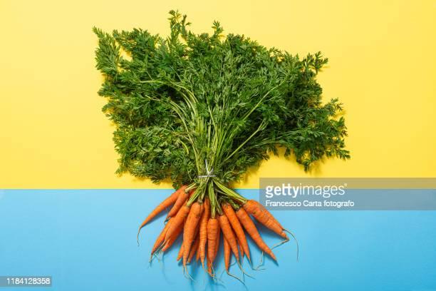 bunch of carrots - vegetais - fotografias e filmes do acervo