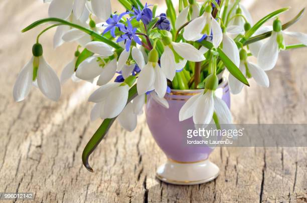 Bunch of Crocus and Snowdrops in a glass vase