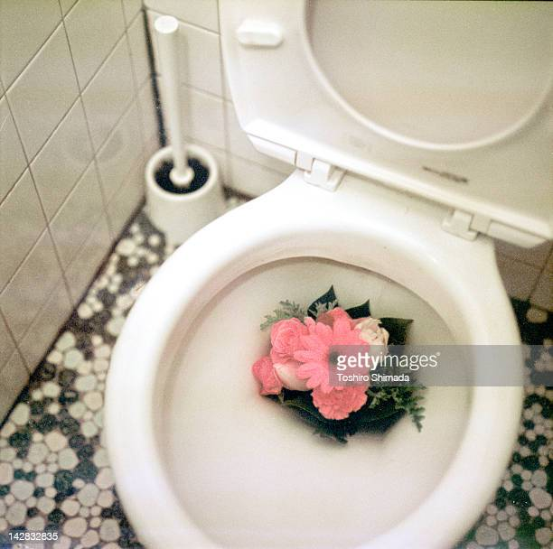 Bunch of flower from toilet