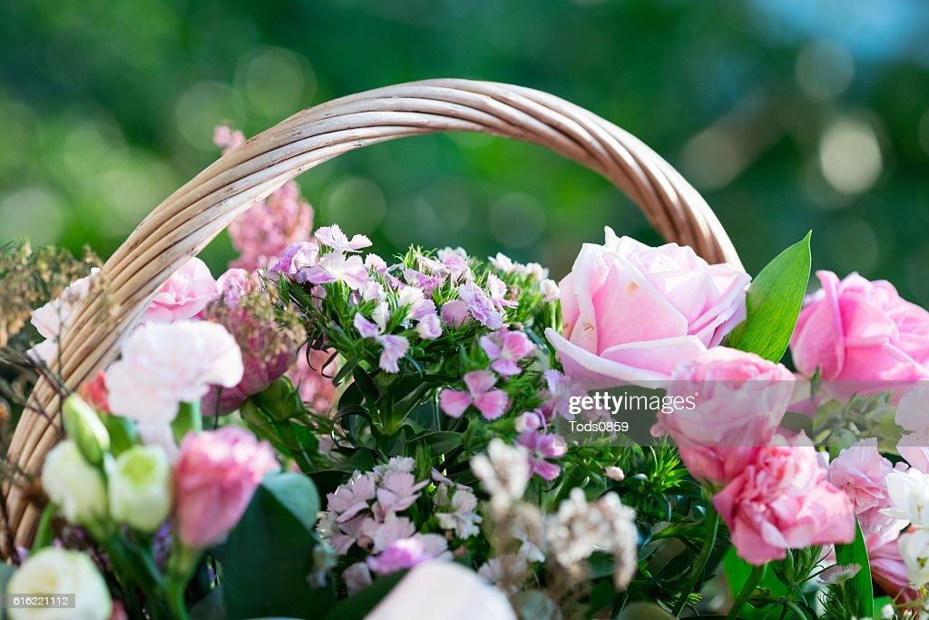 Bunch of Flower : Stock Photo