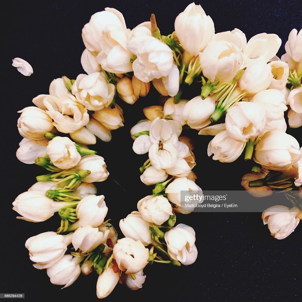 Bunch Of Flowers On Black Background Stock Photo Getty Images